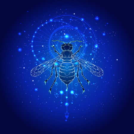 Vector illustration with hand drawn wasp and Sacred geometric symbol against the starry sky. Abstract mystic sign. Linear shape. For you design: tattoo, print, posters, t-shirts, textiles and other.