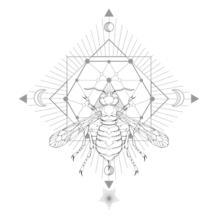 Vector illustration with hand drawn wasp and Sacred geometric symbol on white background. Abstract mystic sign. Black linear shape. For you design and magic craft. Stock fotó - 114089782