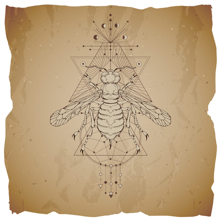 Vector illustration with hand drawn wasp and Sacred geometric symbol on vintage paper background with torn edges. Abstract mystic sign. Sepia linear shape. For you design: tattoo, print, posters, t-shirts, textiles.