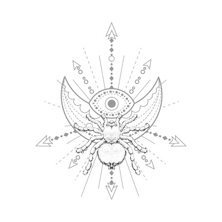 Vector illustration with hand drawn spider and Sacred geometric symbol on white background. Abstract mystic sign. Black linear shape. For you design, tattoo or magic craft. Imagens - 124786812