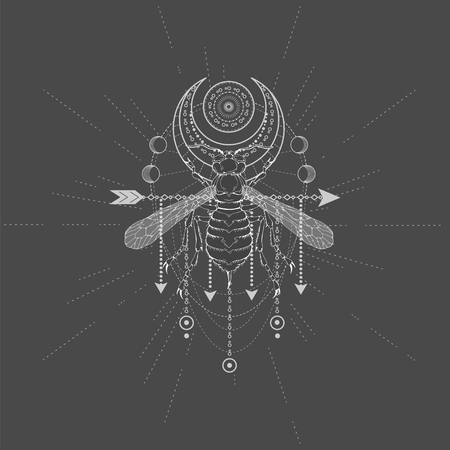 Vector illustration with hand drawn Wasp and symbol Half Moon on black background. Abstract mystic sign. White linear shape. For you design, tattoo or magic craft. Vettoriali