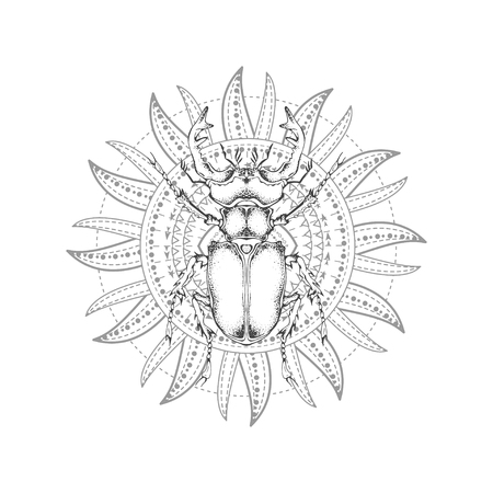 Vector illustration with hand drawn stag beetle and Sacred geometric symbol on white background. Abstract mystic sign. Black linear shape. For you design, tattoo or magic craft. 写真素材 - 121234056