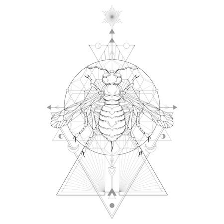 Vector illustration with hand drawn wasp and Sacred geometric symbol on white background. Abstract mystic sign. Black linear shape. For you design: tattoo, print, posters, t-shirts, textiles and magic craft.