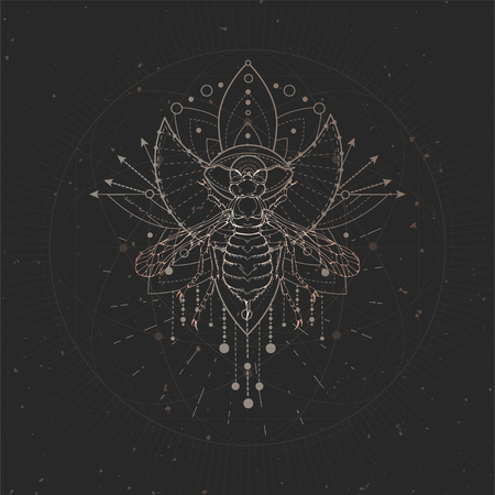 Vector illustration with hand drawn Wasp and Sacred geometric symbol on black vintage background. Abstract mystic sign. Gold linear shape. For you design and magic craft. 일러스트