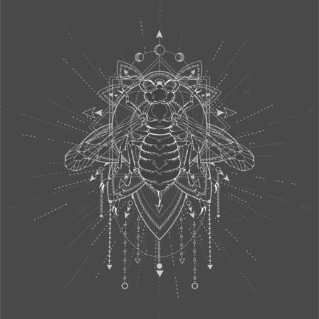 Vector illustration with hand drawn Wasp and Sacred geometric symbol on black background. Abstract mystic sign. White linear shape. For you design, tattoo or magic craft. Illusztráció