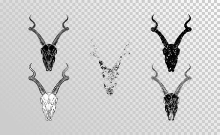 set of hand drawn skulls antelope with grunge elements in different versions on a transparent background. Monochrome. For you design, tattoo or magic craft. Illustration