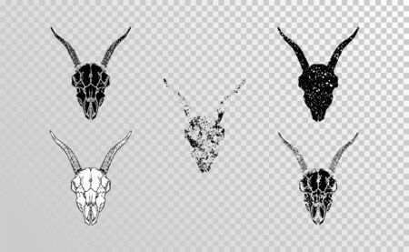 set of hand drawn skulls goat with grunge elements in different versions on a transparent background. Monochrome. For you design, tattoo or magic craft.