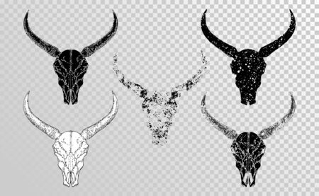 set of hand drawn skulls wild  buffalo with grunge elements in different versions on a transparent background. Monochrome. For you design, tattoo or magic craft.  イラスト・ベクター素材