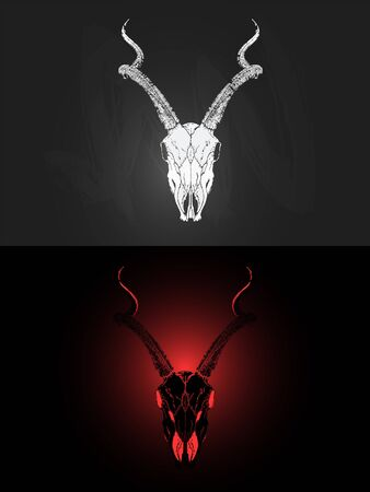 illustration with two variants of hand drawn antelope skull on dark background. In realistic style. For you design, tattoo or magic craft.