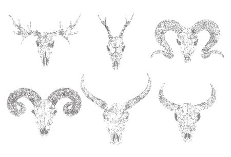 set of silhouettes skulls of horned animals buffalo, deer, bull and ram on white background. Grunge style. Monochrome image. For you design, print, tattoo or magic craft.