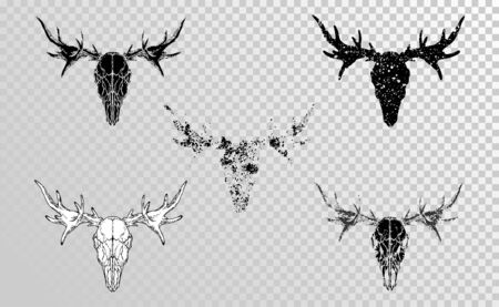 set of hand drawn skulls moose with grunge elements in different versions on a transparent background. Monochrome. For you design, tattoo or magic craft.  イラスト・ベクター素材