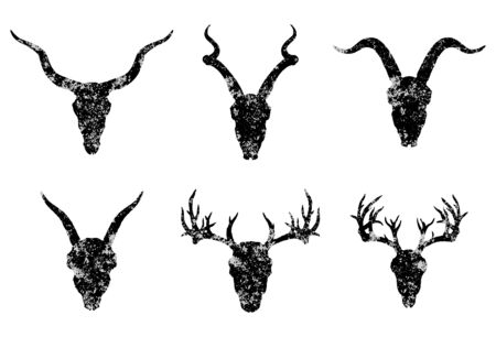 set of six hand drawn skulls of horned animals:  antelopes, deer and goats on white background. Black silhouettes with grunge texture in old sketch and vintage style. Illustration