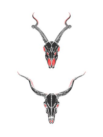 illustration with hand drawn skulls of antelopes on white background. Black and red silhouettes. In realistic style. For you design, tattoo or magic craft.
