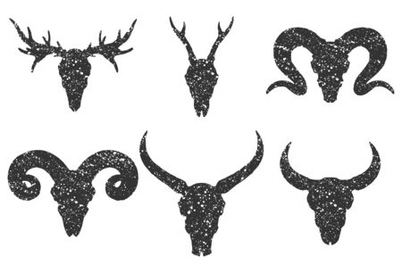 set of six hand drawn skulls of horned animals: buffalo, bull, deer and ram on white background. Black silhouettes with grunge texture in old sketch and vintage style.