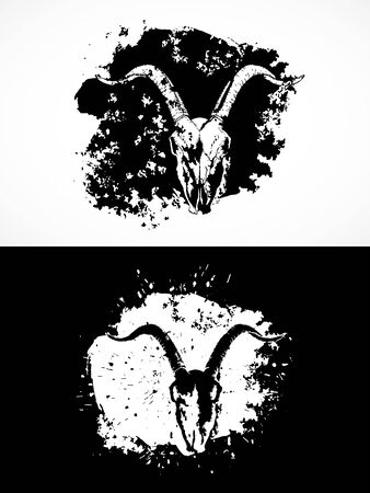 Vector illustration with goat skulls. Two variants: black and white silhouettes with grunge texture and spots. For t-shirts, posters and other your design.