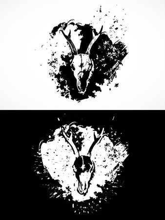 illustration with roe deer skulls. Two variants: black and white silhouettes with grunge texture and spots. For t-shirts, posters and other your design. Ilustração