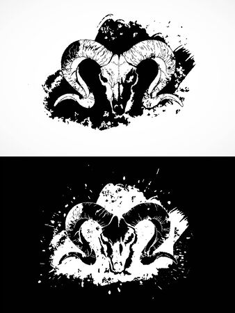 illustration with wild ram skulls. Two variants: black and white silhouettes with grunge texture and spots. For t-shirts, posters and other your design.