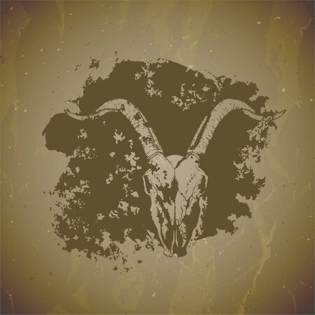 illustration of hand drawn skulls goat with grunge elements on vintage background. Sketch in sepia color. For you design, print, tattoo or magic craft.  イラスト・ベクター素材