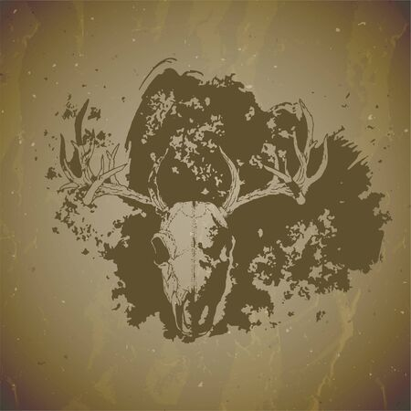 Vector illustration of hand drawn skull deer with grunge elements on vintage background. Sketch in sepia color. For you design, print, tattoo or magic craft.  イラスト・ベクター素材