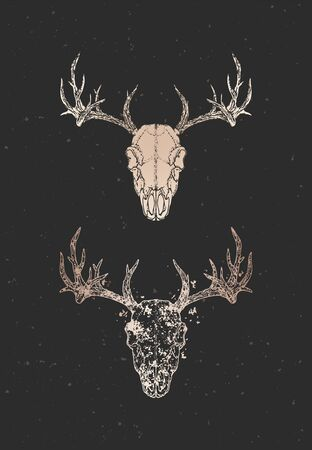 illustration with two variants of hand drawn deer skull on black background. Gold silhouettes and contour with grunge texture. For you design, print, tattoo or magic craft.