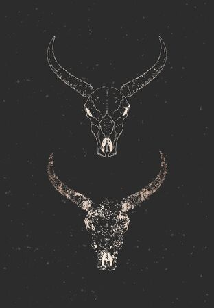 Vector illustration with two variants of hand drawn wild buffalo skulls on black background. Gold silhouettes and contour with grunge texture. For you design, print, tattoo or magic craft. Illustration