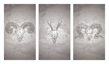 Vector set of three illustrations with hand drawn skulls roe deer and rams on grunge texture background. Vintage sketch in dark color. For you design, print, tattoo or magic craft. Stock Illustratie