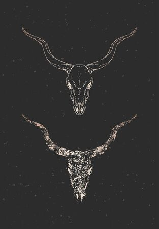 Vector illustration with two variants of hand drawn antelope skull on black background. Gold silhouettes and contour with grunge texture. For you design, print, tattoo or magic craft.