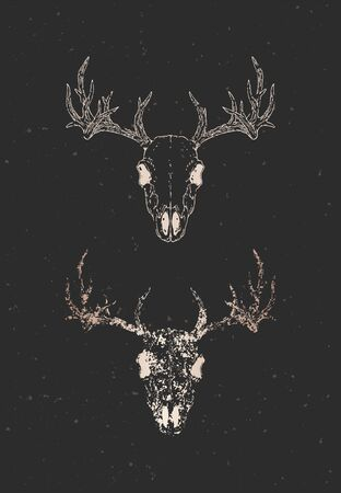 Vector illustration with two variants of hand drawn deer skull on black background. Gold silhouettes and contour with grunge texture. For you design, print, tattoo or magic craft. Illusztráció