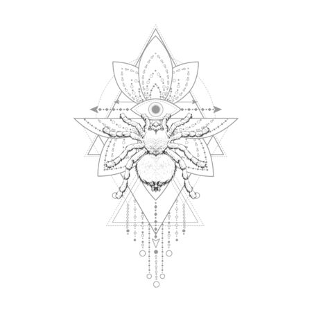Vector illustration with hand drawn spider and Sacred geometric symbol on white background. Abstract mystic sign. Black linear shape. For you design, tattoo or magic craft.