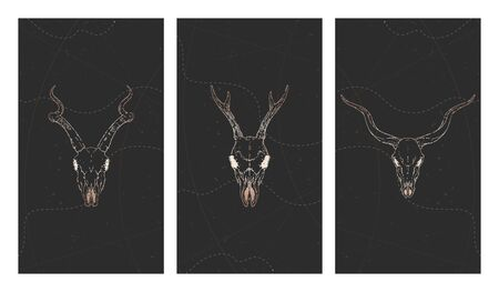 Vector set of three illustrations with gold skulls deer, antelopes and grunge elements on black background. For you design, print, tattoo or magic craft. Stock Illustratie