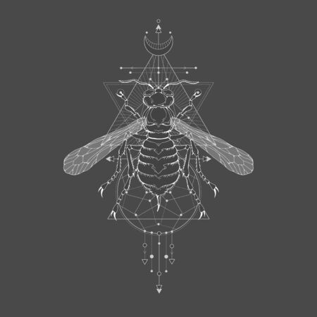 illustration with hand drawn wasp and Sacred geometric symbol on black vintage background. Abstract mystic sign. White linear shape. For you design: tattoo, print, posters, t-shirts, textiles and other.