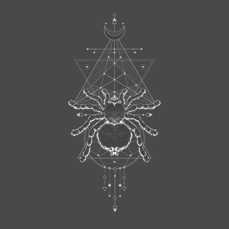 Vector illustration with hand drawn spider tarantula and Sacred geometric symbol on black vintage background. Abstract mystic sign sign. White linear shape. For you design: tattoo, print, posters, t-shirts, textiles and other.