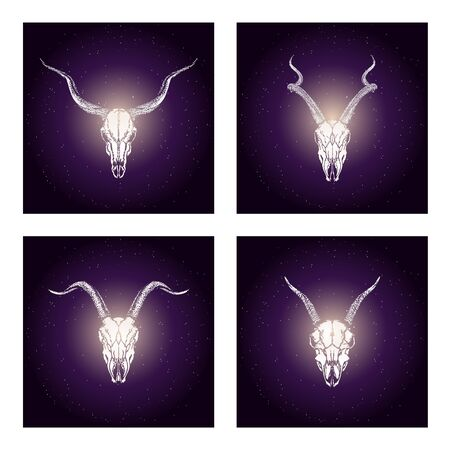 Vector set of four illustrations with hand drawn skulls antelopes and goats on purple abstract background. For you design, print, tattoo or magic craft.