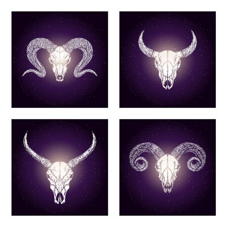 Vector set of four illustrations with hand drawn skulls wild buffalo, bull and rams on purple abstract background. For you design, print, tattoo or magic craft.
