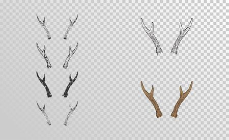 Vector set of hand drawn horns roe deer with grunge elements in different versions on a transparent background. Monochrome and color variation. For you design, tattoo or magic craft. 向量圖像