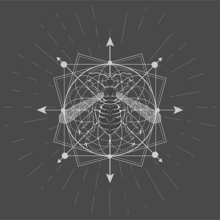 Vector illustration with hand drawn Wasp and Sacred geometric symbol on black background. Abstract mystic sign. White linear shape. For you design, tattoo or magic craft. Imagens - 149745230