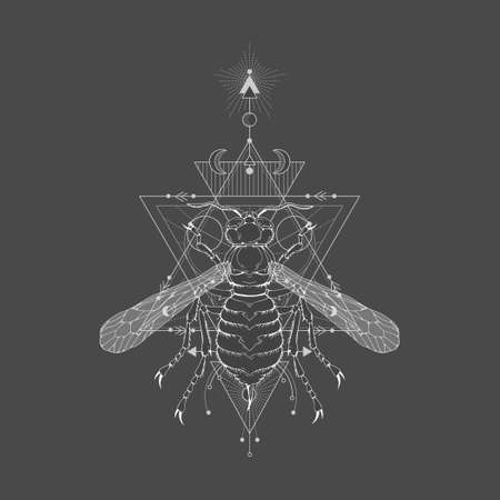 Vector illustration with hand drawn wasp and Sacred geometric symbol on black vintage background. Abstract mystic sign. White linear shape. For you design: tattoo, print, posters, t-shirts, textiles and other. Vettoriali