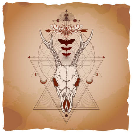 Vector illustration with hand drawn roe deer skull, dead head moth and Sacred geometric symbol on vintage paper background with torn edges. Abstract mystic sign. Image in sepia and red color. Ilustracja