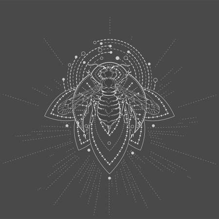 Vector illustration with hand drawn Wasp and Sacred geometric symbol on black background. Abstract mystic sign. White linear shape. Banque d'images - 164046109