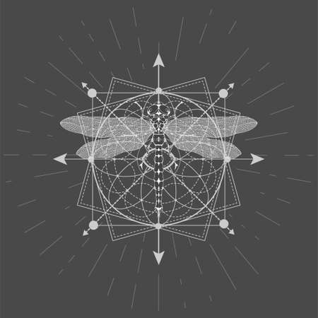 Vector illustration with hand drawn Dragonfly and Sacred geometric symbol on black background. Abstract mystic sign. White linear shape.