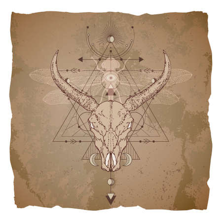 Hand drawn buffalo skull, dragonfly and Sacred geometric symbol on vintage paper background with torn edges. Abstract mystic sign.