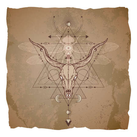 Hand drawn antelope skull, dragonfly and Sacred geometric symbol on vintage paper background with torn edges. Abstract mystic sign.