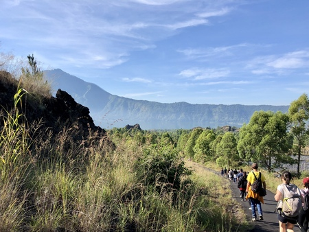 Group of tourists hiking to volcano Batur in Bali, Indonesia Stock Photo