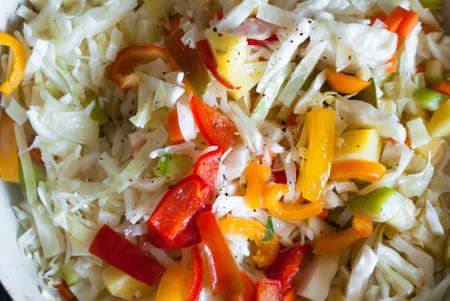 ragout: a vegetable ragout of cabbage, carrots, potatoes, peppers and zucchini