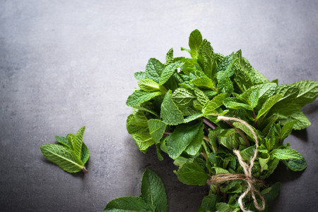 Beton: Green fresh mint on the beton table. View from abobe with space for text. Stock Photo