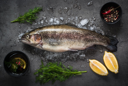 brown trout: Raw brown trout on ice with sea salt,  pepper and ingredients. Fresh fish. Top view. Food background.