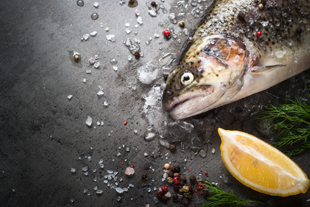 brown trout: Raw brown trout on ice with sea salt,  pepper and ingredients. Fresh fish. Top view, copy space. Food background.