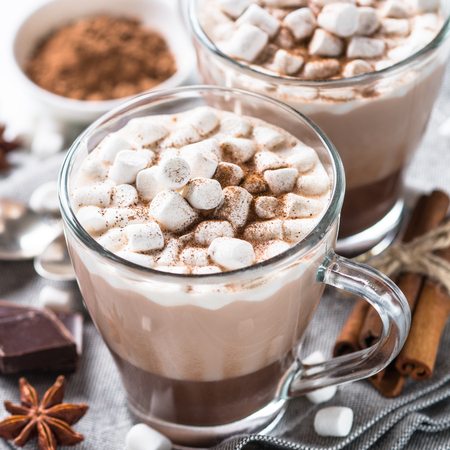 Winter hot drink. Hot chocolate or cocoa with marshmallow and spices on white background. Square. Stock Photo