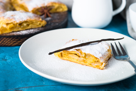 Apple strudel pie puff pastry on plate. Traditional pastry Austrian Viennese strudel with apple spices and sugar powder. Close up.