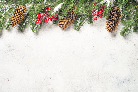 Christmas background with fir tree and cones on white  backgroun